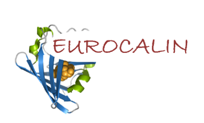 The EUROCALIN Project